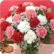 送最适合你妈妈的花