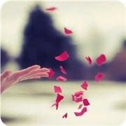 面对怎样的爱情你只能放手