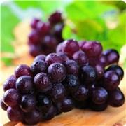 哪种品种的葡萄代表了你呢